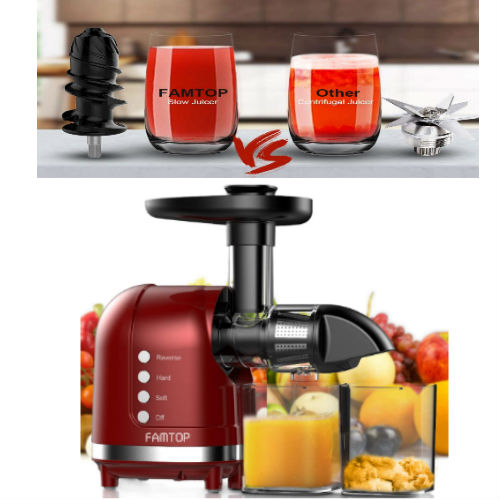 FAMTOP Slow Masticating Extractor - Perfect Choice under 400